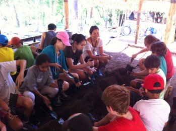 Eco Council Service Trip #1 - Credits to Ms. Christine Yamanaka